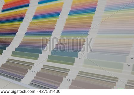 Color guide spectrum swatch samples soft colorful on wood background