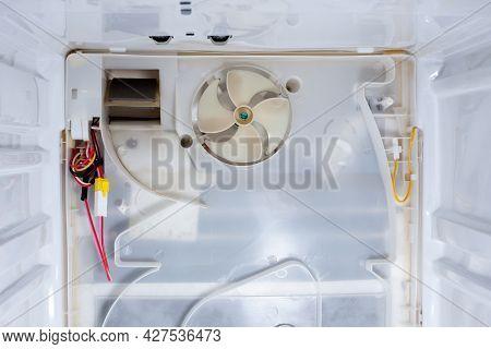 Refrigerator Fridge Ready For Repair. Inside Refrigerator Repair. Disassembled Refrigerator. Removed
