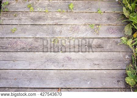 A Wooden Construction Pallet Is Lying On The Grass. Wood Texture On The Grass. Wooden Pallet Grown I