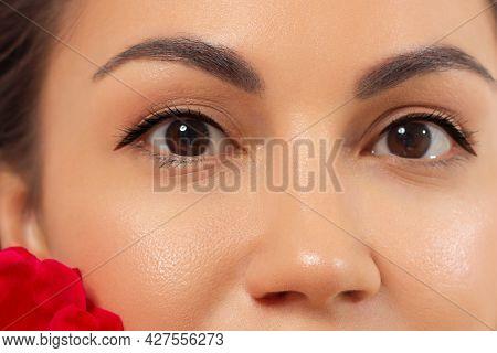 Beautiful Macro Shot Of Female Eye With Classic Eyeliner Makeup. Perfect Shape Of Eyebrows, Brown Ey