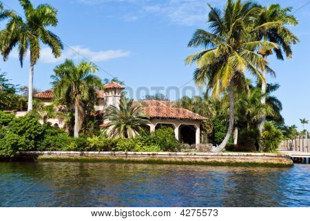 Luxury Mansion With Palms In Fort Lauderdale