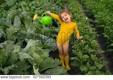 A Happy Little Girl Is Waving A Watering Can With Water Watering A Vegetable Garden With Cabbage And