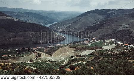 Top view of river and vineyards are on a hills at Douro Valley, Portugal.