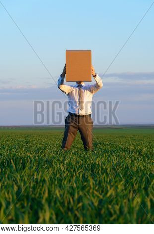 a businessman holds a cardboard box and poses on a green grass field - business concept