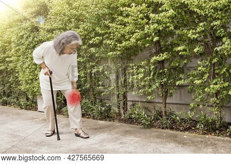 Elderly Asian Woman Massage Her Left Knee With Osteoarthritis During Walking : Knee Injury Inflammat