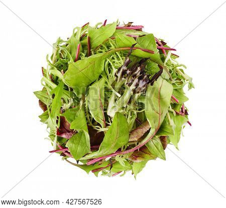 Organic fresh salad green leaves. Food herbs for healthy eating diet ration with vitamins, isolated on white background.