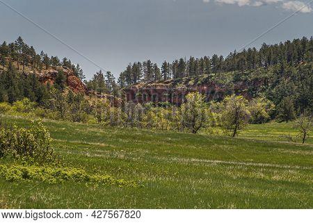 Black Hills, Keystone, Sd, Usa - May 31, 2008: Custer State Park. Belt Of Red Rock Cliffs Behind Pra