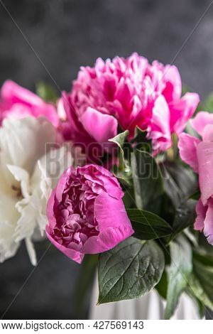 Fresh Peony Flowers In Vase. Bouquet Close Up. Stylish Floral Greeting Card.fresh Peony Flowers In V