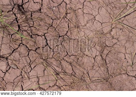 Top View Of Cracked Arid Soil With Dry Grass. Desolate Barren Land For Concept Background About Glob