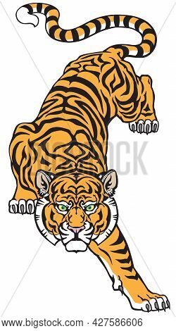 Tiger Climbing Down And Big Cat Eyes Looking Straight. Isolated Front View Image. Tattoo Style Vecto