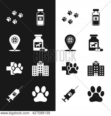 Set Dog Medicine Bottle And Pills, Location Veterinary, Paw Print, Pets Vial Medical, Veterinary Cli