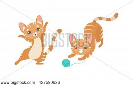 Cute Ginger Striped Kitten As Furry Domestic Pet Playing With Yarn Ball Vector Set