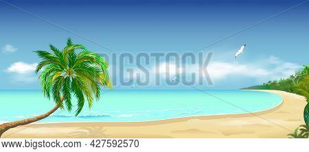 Sandy Tropical Beach. Palm Tree Above The Water. Ocean Coast. Seascape Of The Shore. Ocean, Sky, Clo