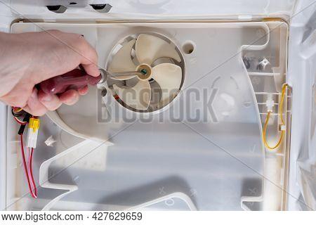 A Technician Uses A Screwdriver In Refrigerator Fridge. Inside Refrigerator Repair. Disassembled Ref