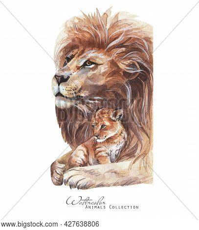 Lion And Cub Portrait. Lions Family Watercolor Illustration