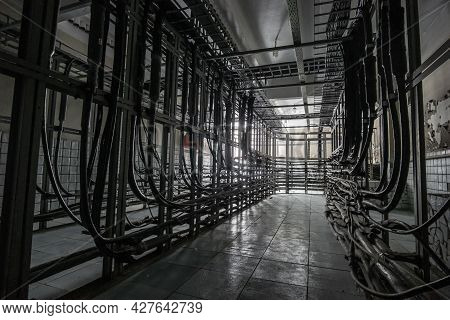 Cable Cabinet With Many Cables. Cable Cabinet Of Automatic Telephone Exchange.