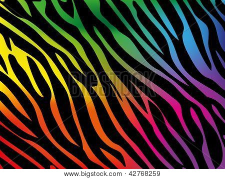 Rainbow Zebra Background