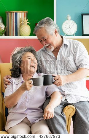 Senior Couple Happy Love Elderly Couple Smile Face, Old Man And Senior Woman Relaxing On Living Room
