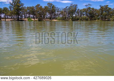 Murray River At Curlwaa, Nsw, Australia. Natural Border With The State Of Victoria.