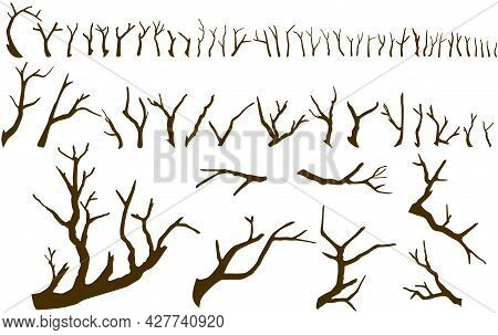 Set Of Bare Tree Branches Isolated On The White Background. Big Collection Of Big And Small Sticks W