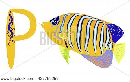 Abc Kids Letter. Emperor Angelfish Pomacanthus Imperator On White, Sea Animal Wildlife Character. Na