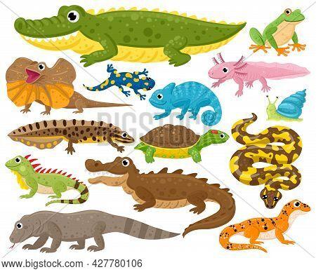Reptiles And Amphibians. Cartoon Frog, Chameleon, Crocodile, Lizard And Turtle, Wildlife Animals Vec