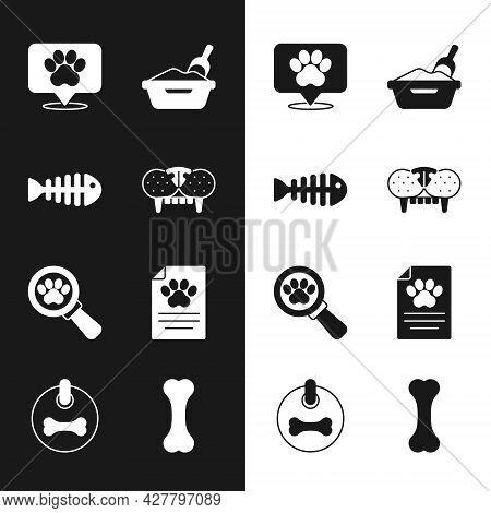 Set Cat Tooth, Fish Skeleton, Location Veterinary Hospital, Litter Tray With Shovel, Veterinary Clin