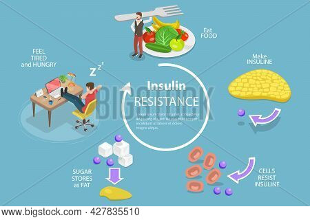 3d Isometric Flat Vector Conceptual Illustration Of Insulin Resistance Syndrome, Poor Liver Response