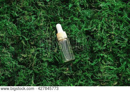 Transparent Dropper Bottle With Serum Lotion Or Essential Oil On Moss Background. Flat Lay, Top View