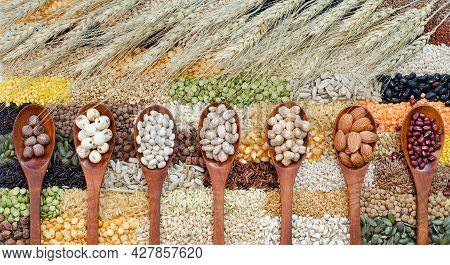 Collection Of Healthy Cereal Food Ingredient Consisted Of Lotus Seed, Pinto, Chick Pea, Almond, And