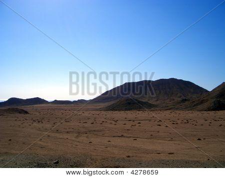 Desert Lonelyness