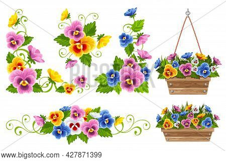 Decorations Set With Pansy. Colorful Pansy With Leaves In The Wooden Flower Pot, Standing And Hangin