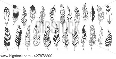 Rustic Ethnic Decorative Feathers, Drawn Ink Boho Vintage Vector Tribal Feathers.