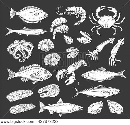 Seafood Icon Set, White On Black. Glyph Monochrome Herring Squid, Octopus, Salmon, Halibut Oysters A