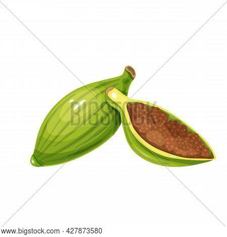 Cardamom Or Cardamon, Aromatic Food, Healthy Menu. Aromatic Seasoning Ingredient. Herbs , Salad And