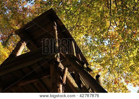 Closeup of hunter cottage