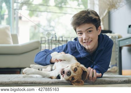 The Boy With Baby Dog. Kids Play With Puppy. Little Boy And The Beagle At Couch. Pet At Home. Animal