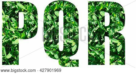 English Alphabet Letters Set. Letters P Q R From Green Grass Isolated On White Background. Elements