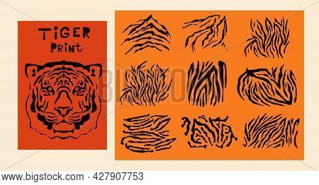 Abctract Set Elements  Safari Animal Prints. Face Head Tiger. Exotic Wild Animal Skin. Safari Print.