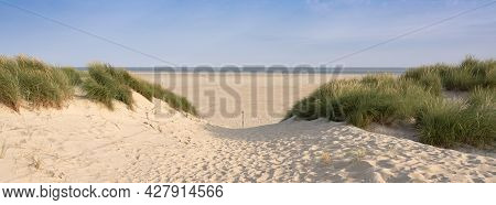 Dunes With Marram Grass And Empty Beach On Dutch Island Of Texel On Sunny Day With Blue Sky In Summe