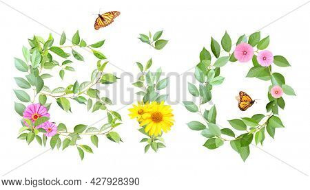 Bio and ecology concept. Word BIO made from branches with flowers, green leaves and two butterflies.  Isolated on white background