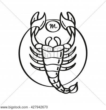 Isolated Scorpio Icon Outline Zodiac Sign Vector