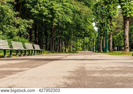 Alley In The Forest Park, Riga (mežaparks) At Summer. Low Angle Photo Of Footpath In The Park Lined