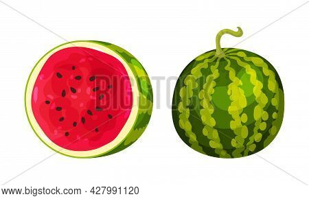 Fresh And Juicy Watermelon Fruit With Red Flesh And Black Seeds Vector Set