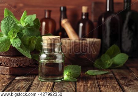Fresh Spearmint Leaves And A Small Bottle With Essential Mint Oil. Herbal Medicine Ingredients On An