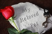 A concrete stone helps to remember a pet that has died. poster
