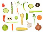Vegetable selection in abstract design isolated over white background. Tomato runner bean garlic turnip asparagus carrot spring onion courgette mushroom cucumber chilli pepper sprout parsnip mangetout broccoli sweet corn. poster