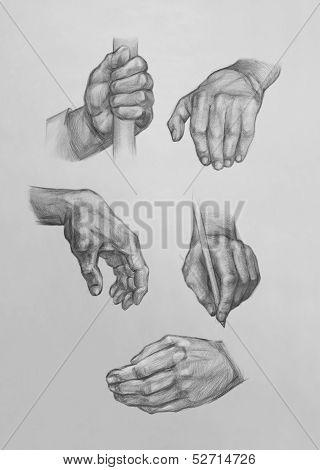 Sketches Of Hands