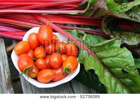Cherry tomatoes and swiss chard