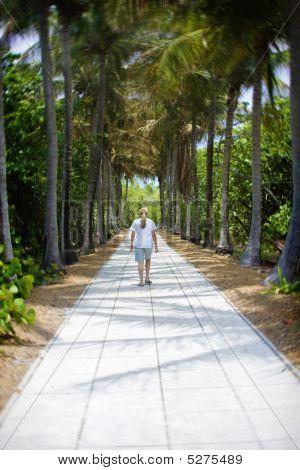 Peaceful Walk On Vacation